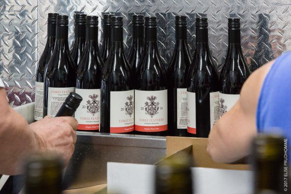 Final Three Feathers 2016 vintage Pinot Noir bottled and ready f