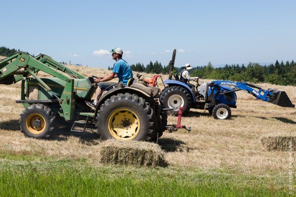 John Deere and New Holland cross paths in the haying frenzy at Three Feathers Estate & Vineyard