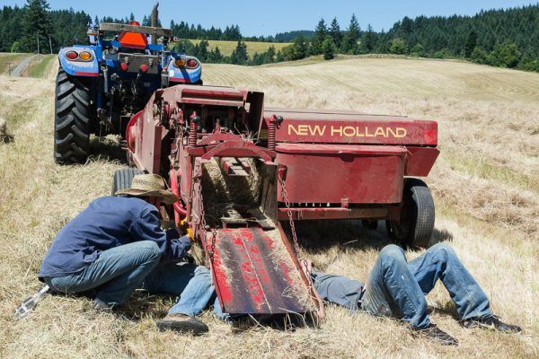 New Holland Baler needs to be retuned during haymaking at Three
